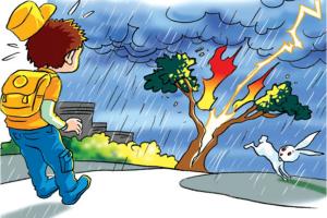 Kỹ năng phòng ngừa tai nạn mùa mưa bão